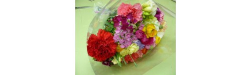 Fleurs et Plants