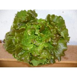 Salade La Pièce