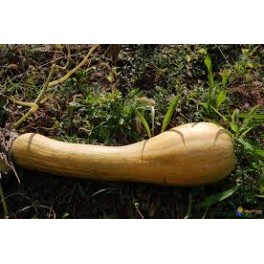 Courge 500 gr