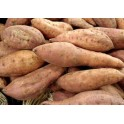 Patate Douce 500 Gr