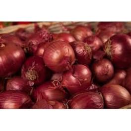 Oignons rouge 500 gr